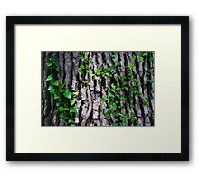 Parasitic Attachment Framed Print