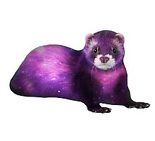 Galaxy Ferret Photographic Print