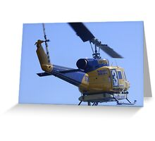 Flying Past Greeting Card
