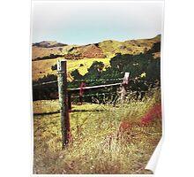 Santa Rosa Creek Valley Poster