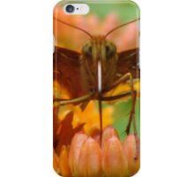 Great Spangled Fritillary Portrait iPhone Case/Skin