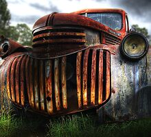 Out to Pasture by clydeessex