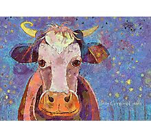 THE COW WITH THE CRUMPLED HORN Photographic Print