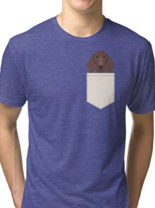 Piper - Dachshund, weener dog, wiener dog, pet portrait, sausage dog, pet Tri-blend T-Shirt