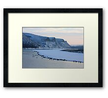 Wintering Along the Oldman Framed Print