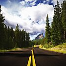 Road to Castle Mountain by Dominic Kamp