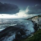 Shutter Coast Island by Dominic Kamp