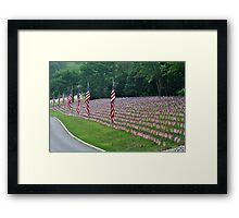 Flags I Framed Print