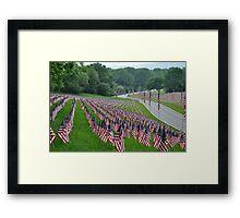 Flags II Framed Print