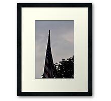 Flags IV Framed Print