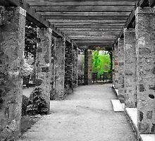 Narnia © by Dawn M. Becker