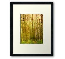 Center Framed Print