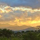 South African Landscape by KAREN SCHMIDT