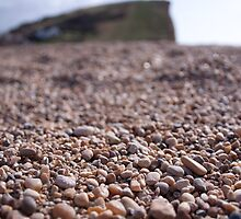 Lyme Regis Gravel by Pig's Ear Gear