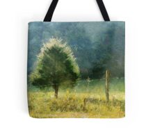 Cedar In Morning Light Tote Bag
