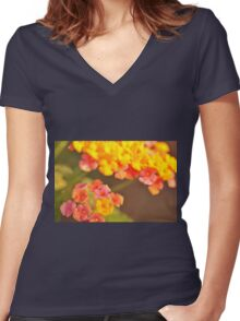 Lantana, As Is Women's Fitted V-Neck T-Shirt