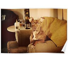 Annabelle: Chair Sitter Poster