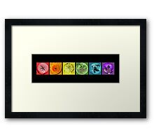 Rainbow Flower Swirls  Framed Print