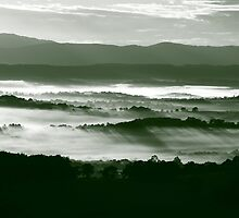 Low Cloud in the Valley by Jenni Tanner