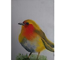 Birdy Painted with Oil Photographic Print
