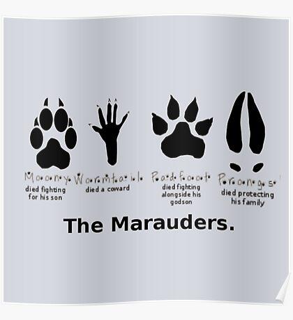 Marauders Animagus Footprint  Poster