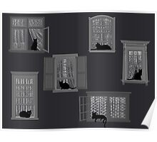 Cats in Windows Poster