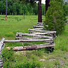 """""""Split Rail Fence"""" by Lynn Bawden"""
