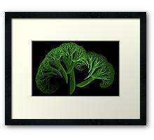 Apo Broccoli Framed Print