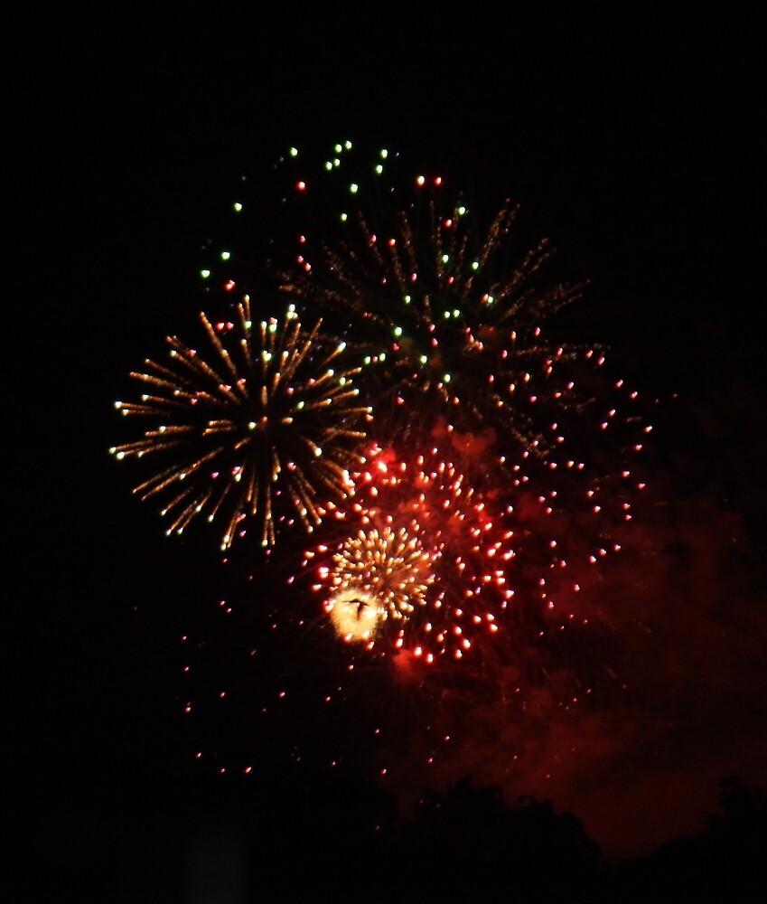 Gympie Fireworks by Jenelle  Irvine