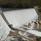 Wellington Dam 2 by mike421