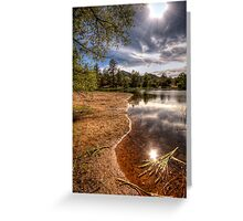 Shoreline Peek Greeting Card