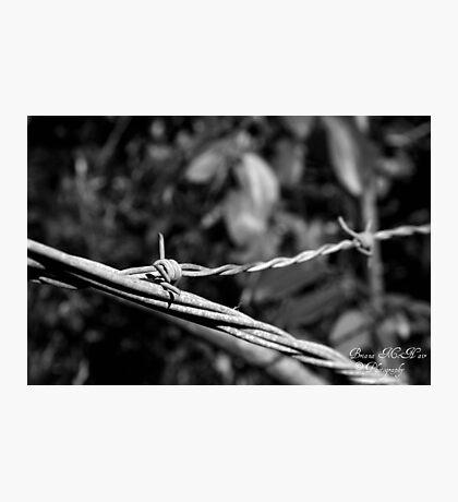 Wires Crossed Photographic Print
