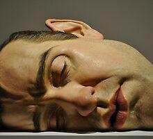 ron mueck: mask ii by gary roberts