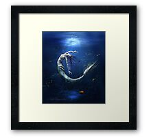 Another miss-understood world Framed Print