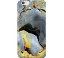 Fire-breathing Dragon iPhone Case/Skin
