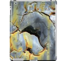 Fire-breathing Dragon iPad Case/Skin