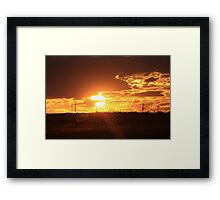 Cane Fields at the end of the day Framed Print