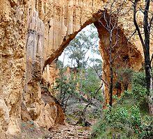 The Arch Tambaroora NSW Australia by Bev Woodman