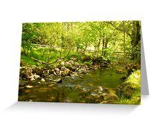 A stream in Glendalough Greeting Card