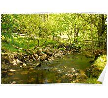 A stream in Glendalough Poster