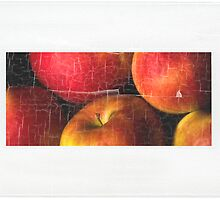 Apples by Dania Reichmuth