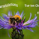 Top Ten by Ray Clarke