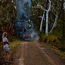The Bush Express! by Dianne English