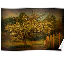 Tree And Fence Poster