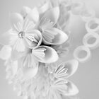 Paper flowers by Jemma Murphy
