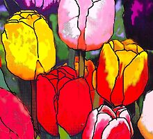 Tulips by Angelo Aguinaldo