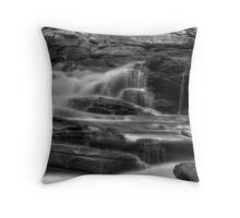 Seneca Falls, detail #2 Throw Pillow