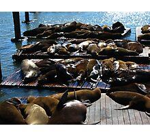 Fishermans Wharf Photographic Print