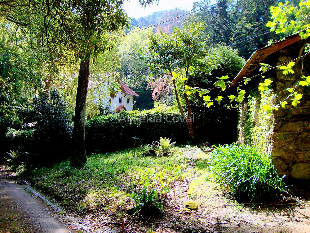 welcome to paradise 190..sintra portugal.. by Almeida Coval