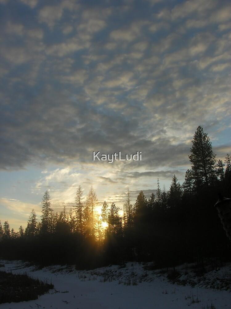Winter Sunset in Washington State no. 1 by KaytLudi